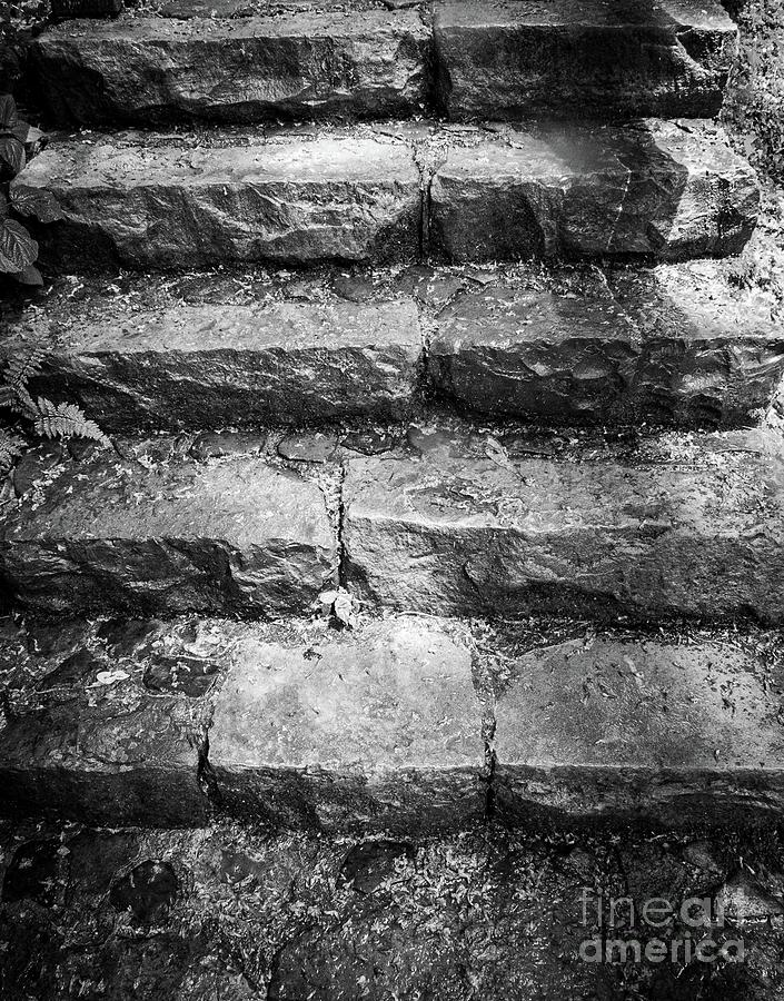 Stone Steps by Bob Mintie