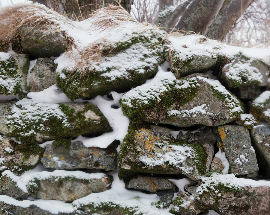 Stone Wall in Winter by Lindley Johnson