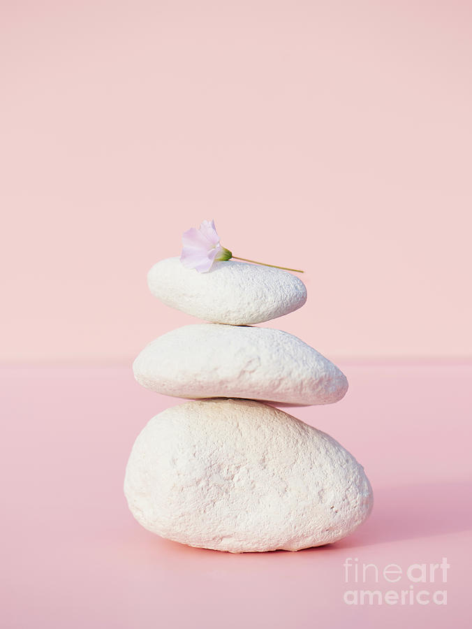 Stones Balancing With Flower Photograph by Tara Moore