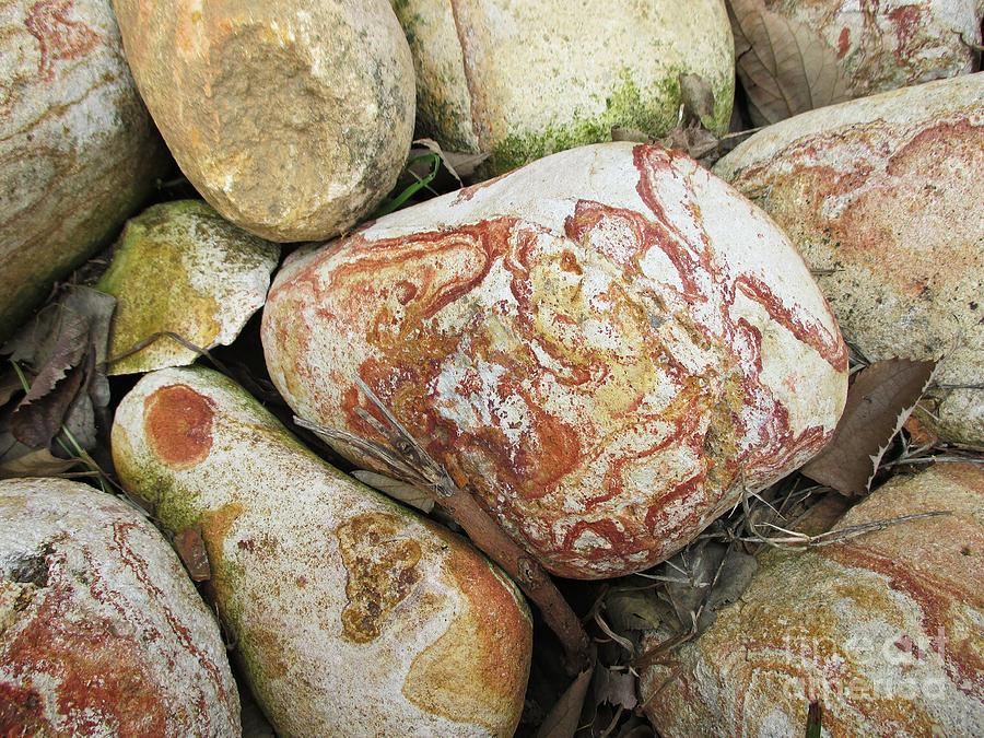 Stones in Benalmadena by Chani Demuijlder