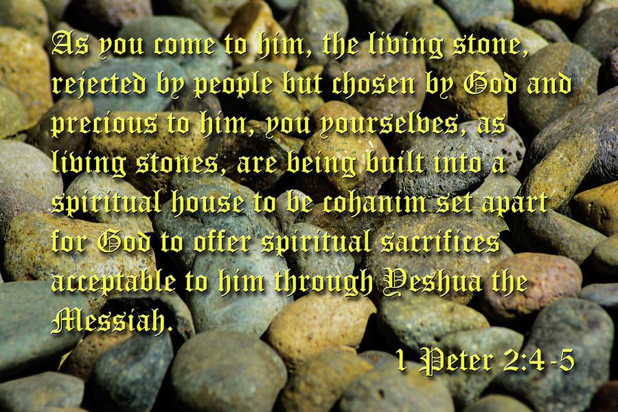 Stones by Tikvah's Hope