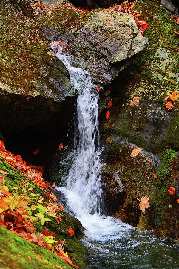Stony Brook Falls by Raymond Salani III