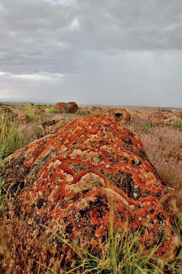 Storm Over Lichen Covered Boulder by Ray Mathis