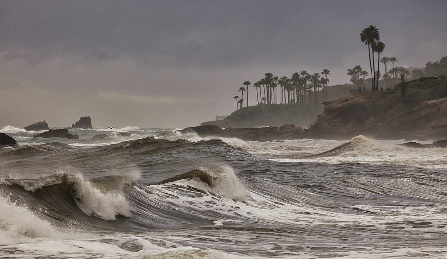 Storm Swell North Laguna by Cliff Wassmann