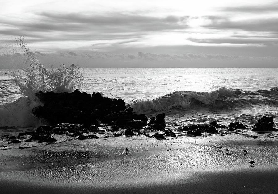 Stormy Sea 2 by Steve DaPonte