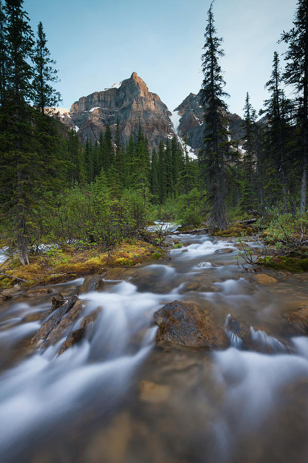 Stream In The Valley Of The Ten Peaks Photograph by Mint Images - Art Wolfe