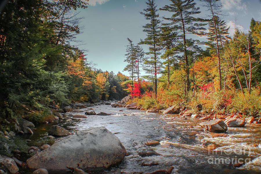 Stream In The White Mountains Photograph By Claudia M Photography