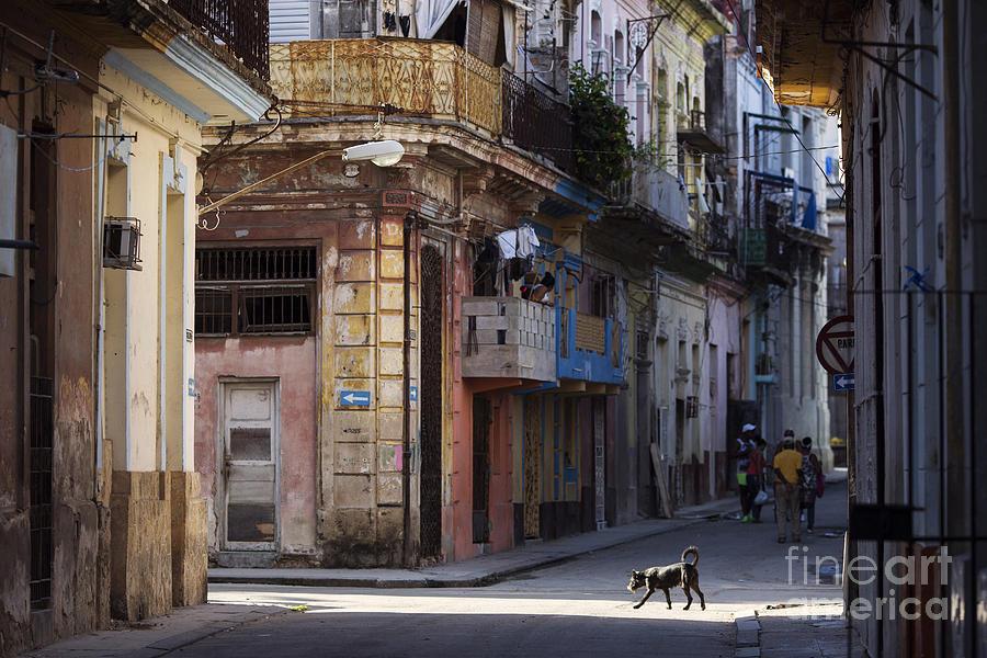 Auto Photograph - Street Of Havana, Cuba by Danm12