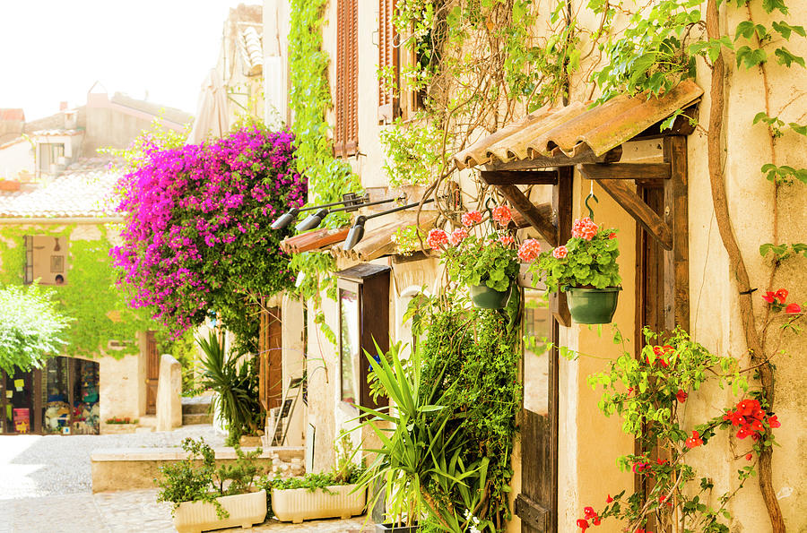 Street Of Provencal Town Full Of Photograph by Spooh