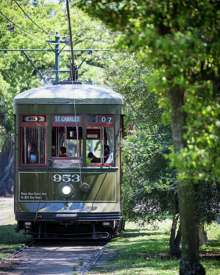 Streetcar On St Charles Photograph By Darryl Howard
