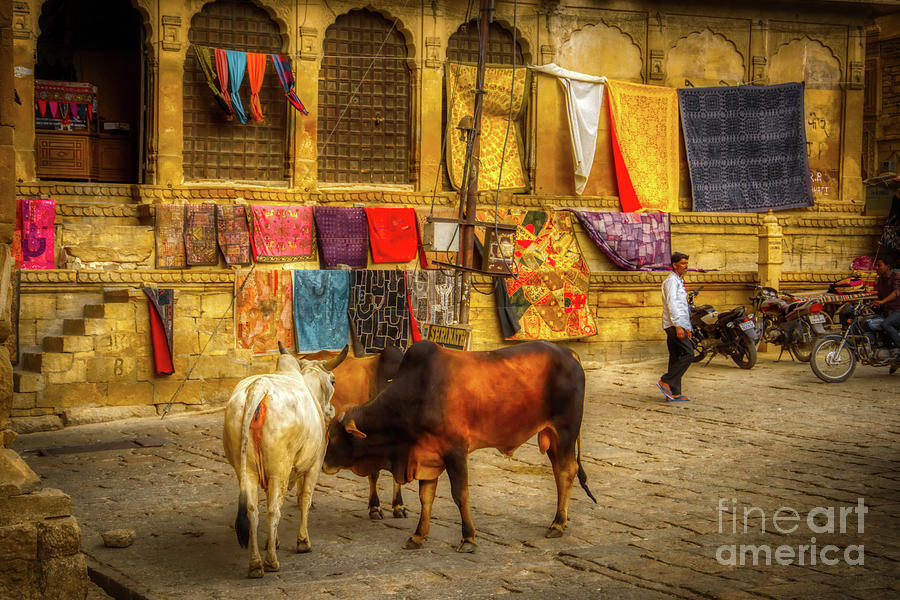 Streets of India 2 by Stefano Senise