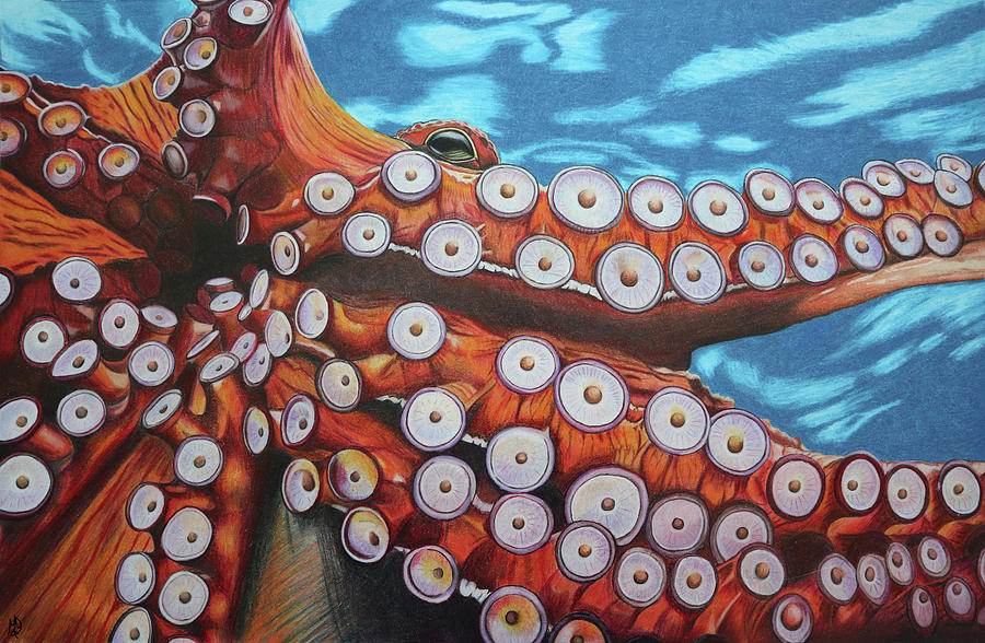 Octopus Painting - Octopus - Stretching Out Those Tentacles by Melanie Feltham
