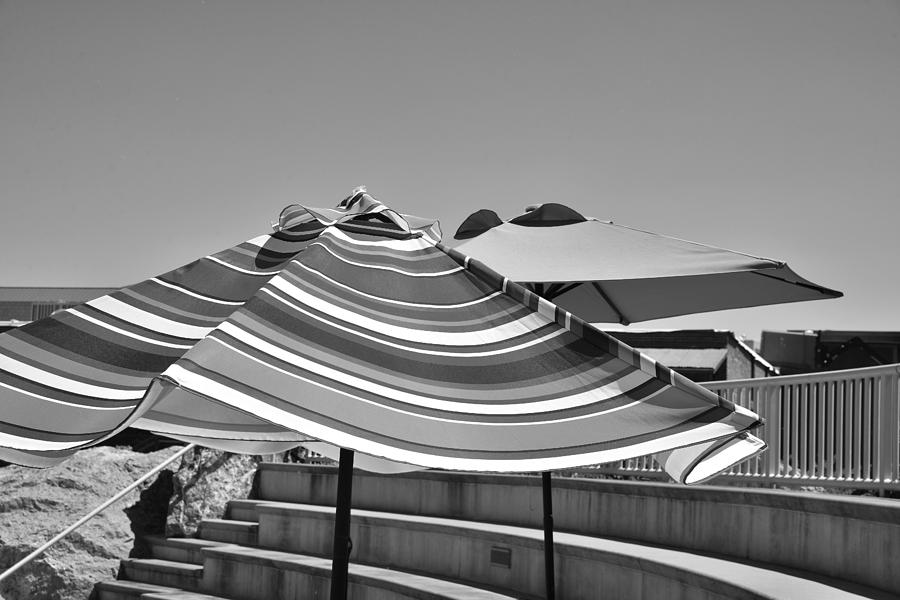 Striped Umbrellas in Black and White by Kae Cheatham