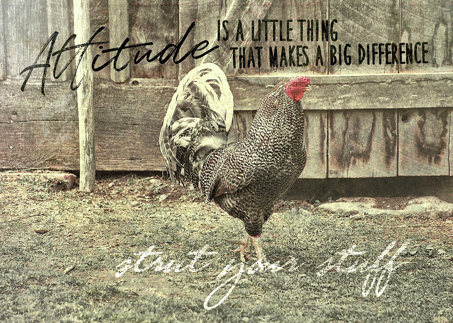 Rooster Photograph - Strut Quote by JAMART Photography