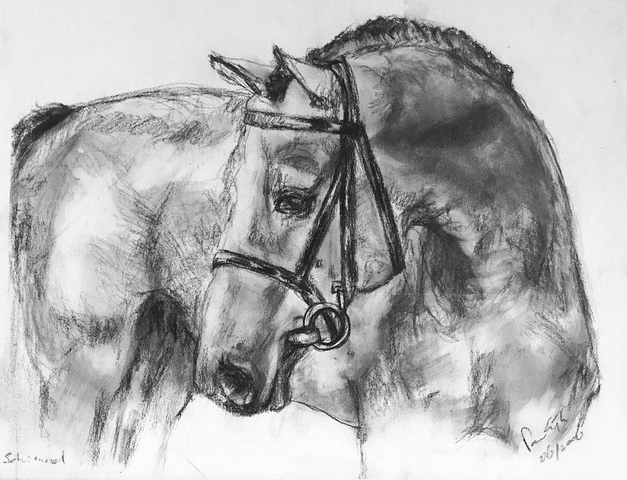 Studie Drawing