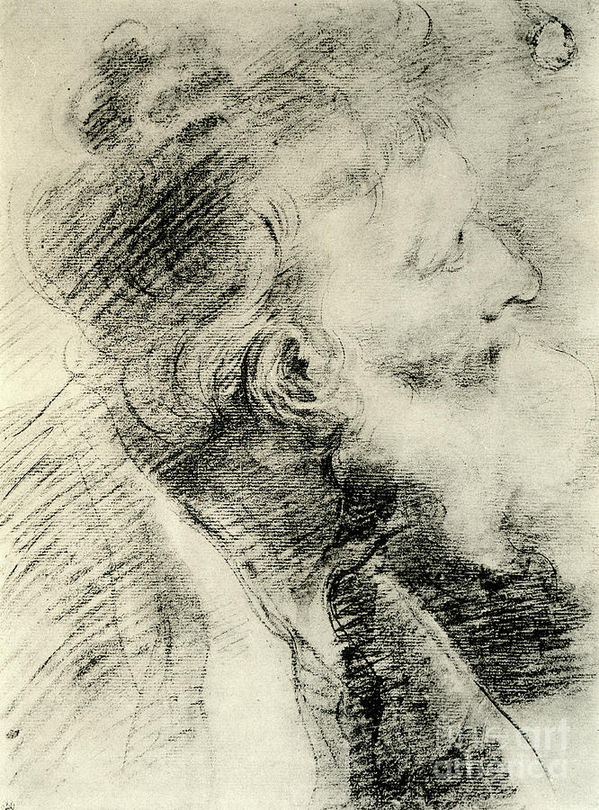 Study For The Head Of An Old Man Drawing by Print Collector