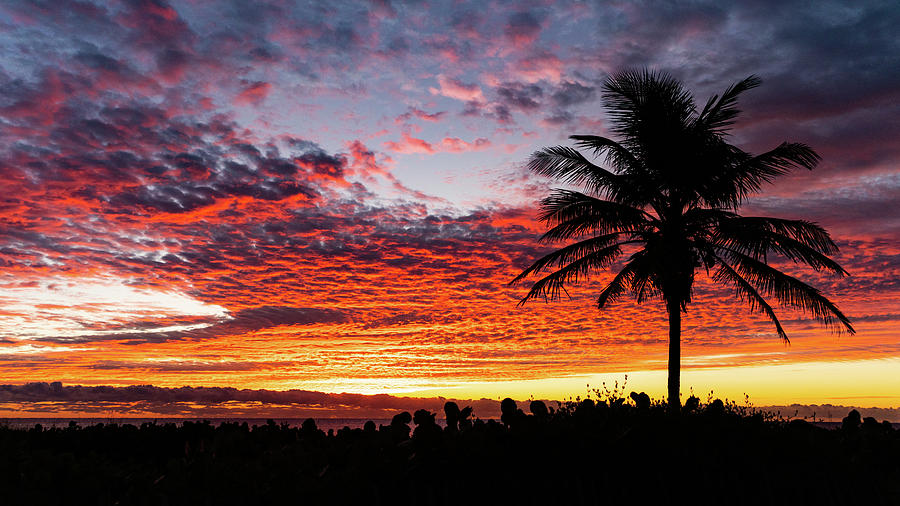 Stunning Sunrise Palm Delray Beach Florida by Lawrence S Richardson Jr