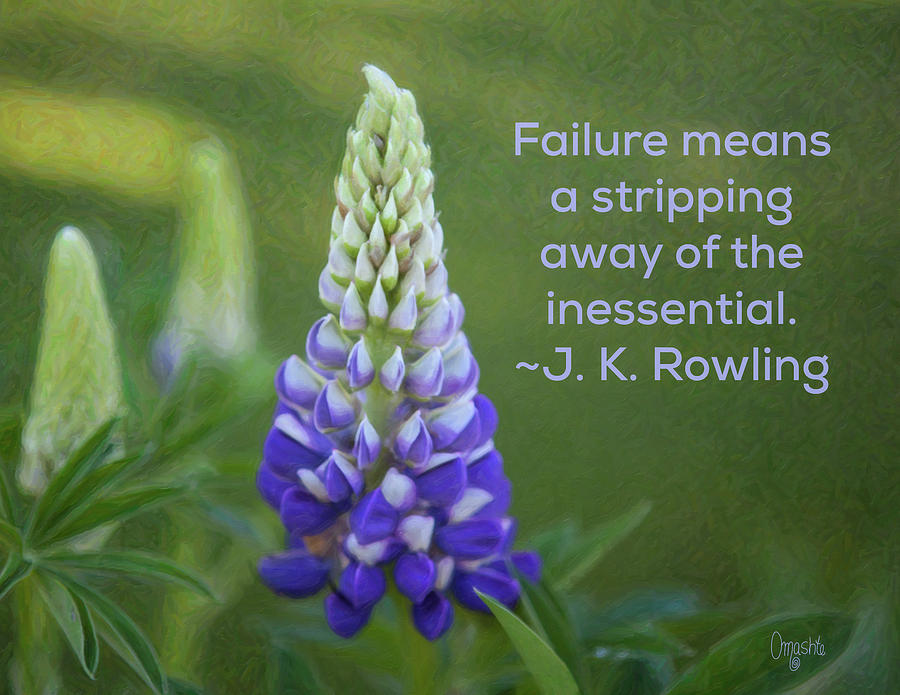 Success via Failure - Motivational Flower Art by Omaste Witkowski by Omaste Witkowski