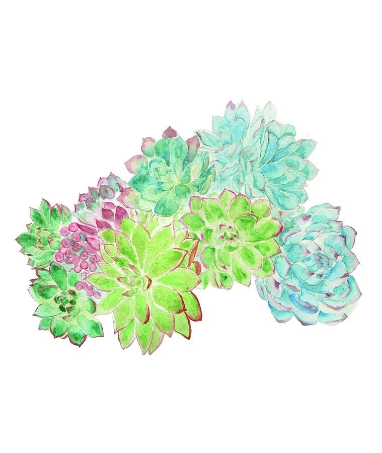 succulent arrangement watercolor painting  by Color Color