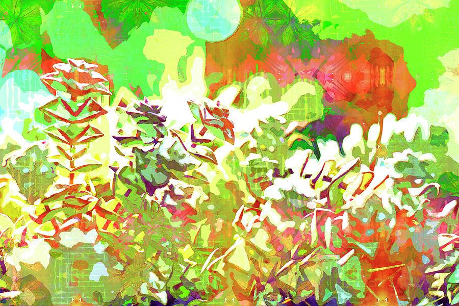 Succulent garden 1 by Jocelyn Friis