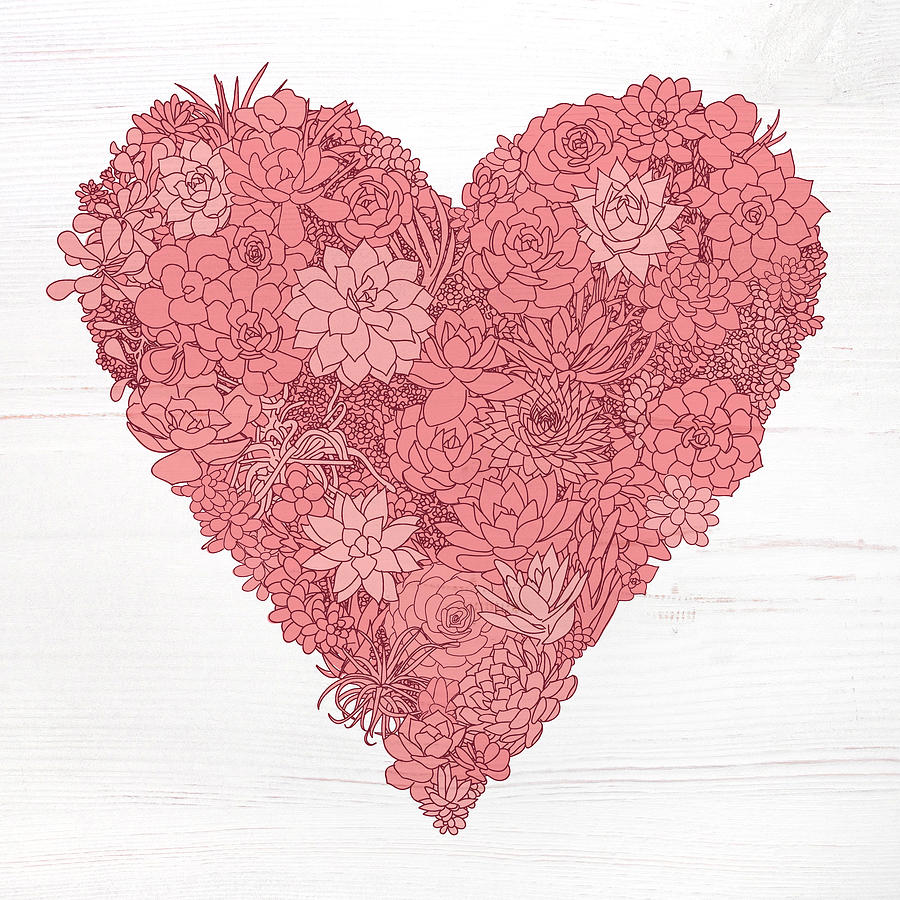 Pink Succulent Heart White Background by Jen Montgomery
