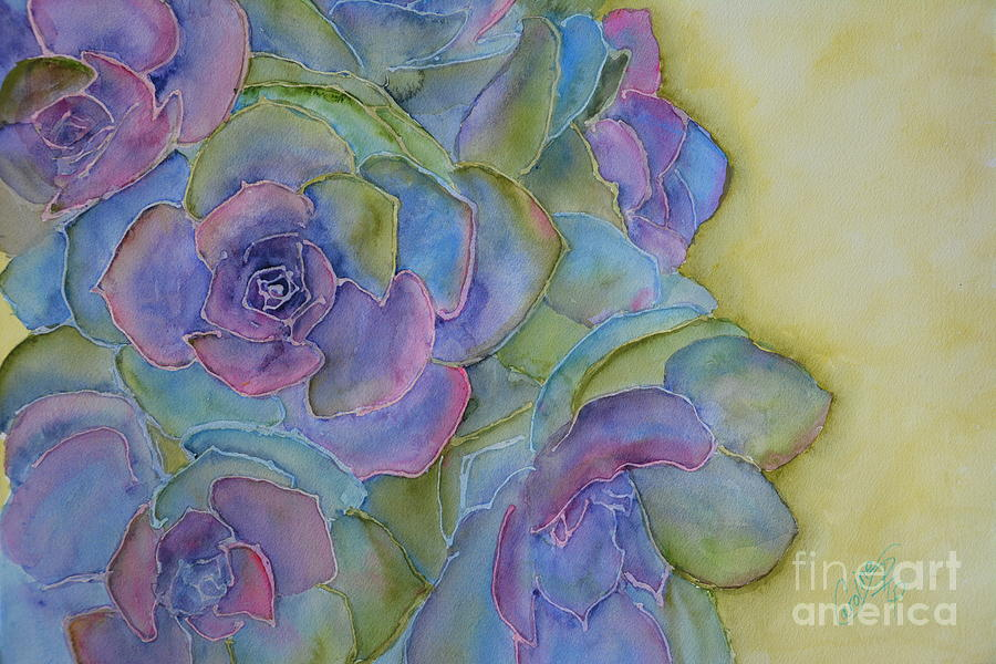 Succulents  by Caroline Harris