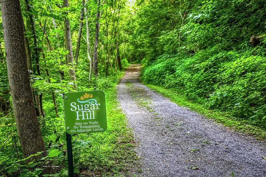 Sugar Hill Trail by Dale R Carlson