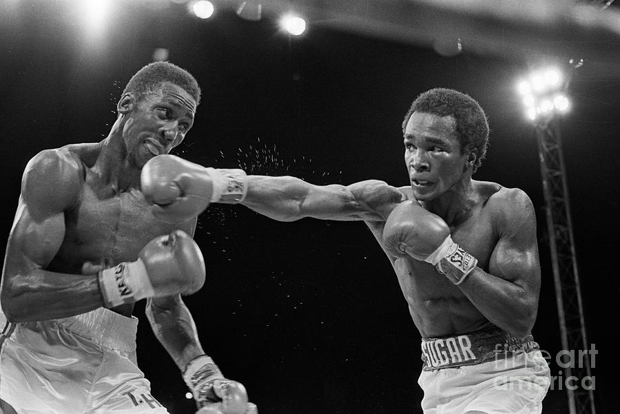 Sugar Ray Leonard Jabbing Tommy Hearns Photograph by Bettmann