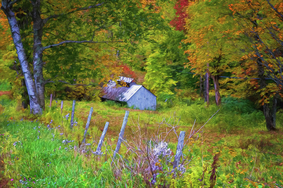 Sugar Shack In The Woods by Tom Singleton