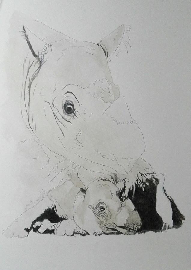 Sumatran Rhino in progress by Barbara Keith