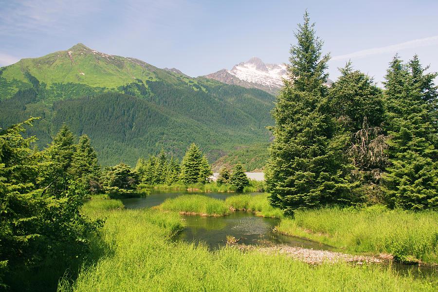 Summer Alaska by Yulia Kazansky