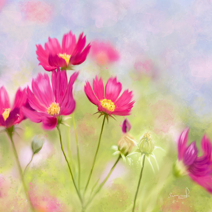 Summer Blossom by Sannel Larson
