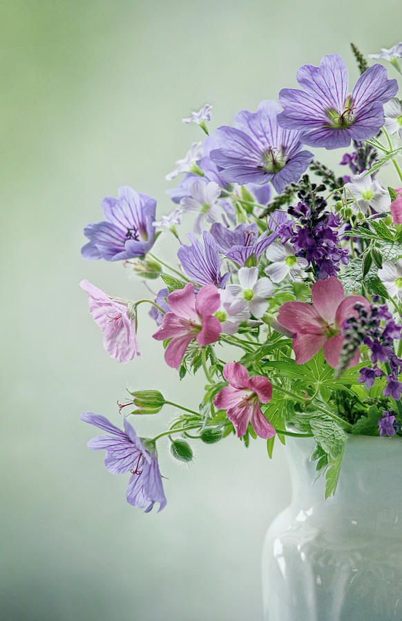 Summer Bouquet Photograph by Mandy Disher Photography