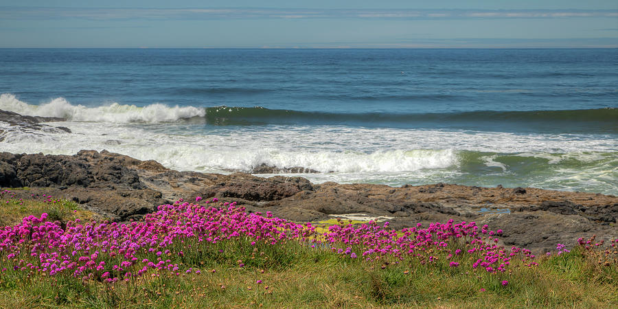 Summer By The Sea 0937 Photograph