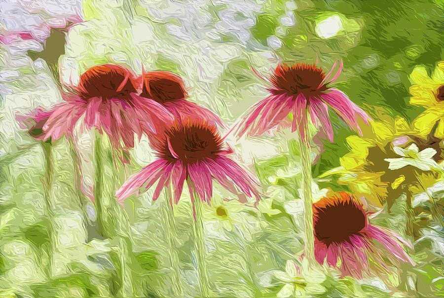 Summer coneflowers by Garden Gate magazine
