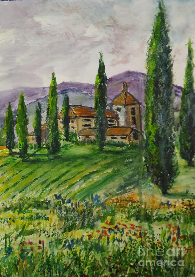 Summer cypress