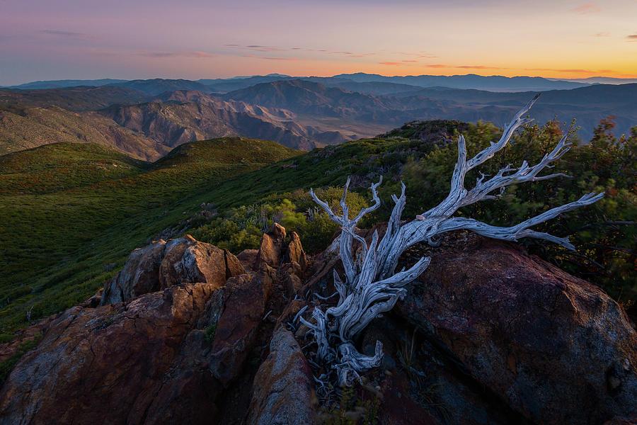 Summer Dawn at Garnet Peak by Alexander Kunz