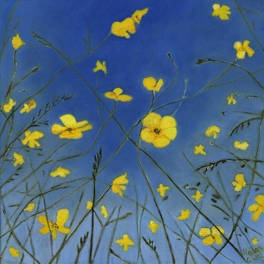 Buttercups Painting - Summer Days And Lazy Ways by Helen White