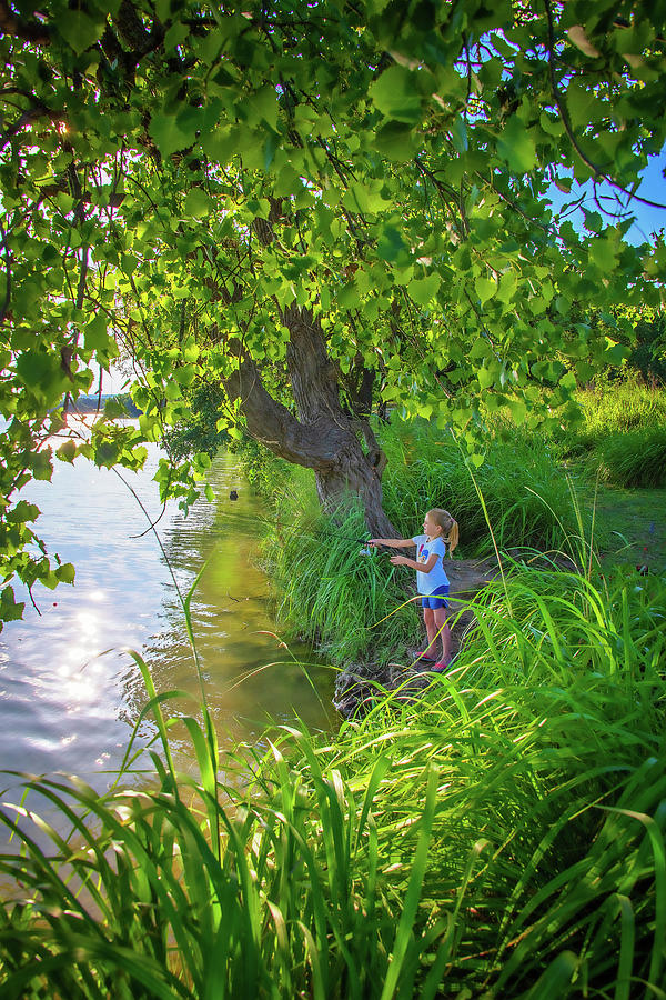 Summer Days at the Lake by Lynn Bauer