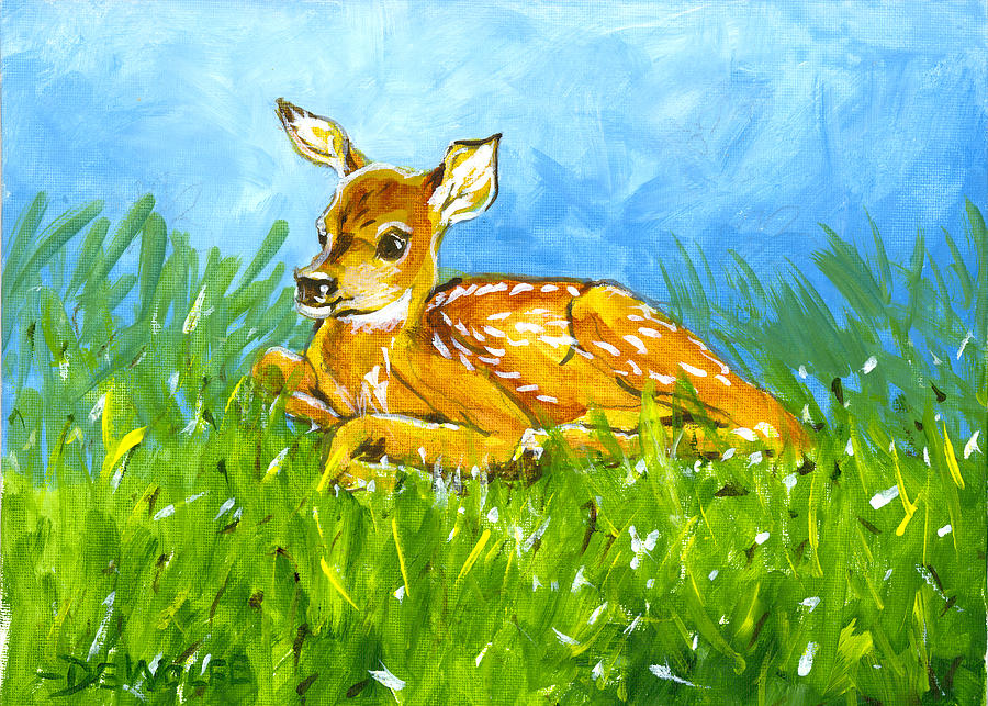 Summer Fawn Sketch by Richard De Wolfe