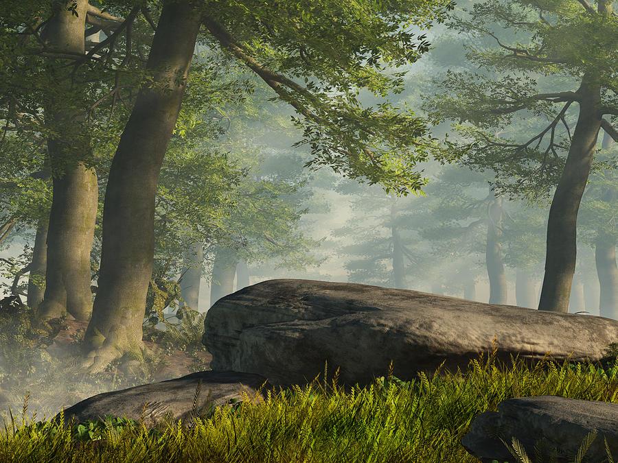Landscape Digital Art - Summer Forest by Mindscape Arts