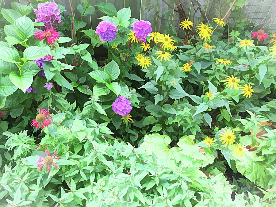 Summer Garden Bluebell Impressions Photograph