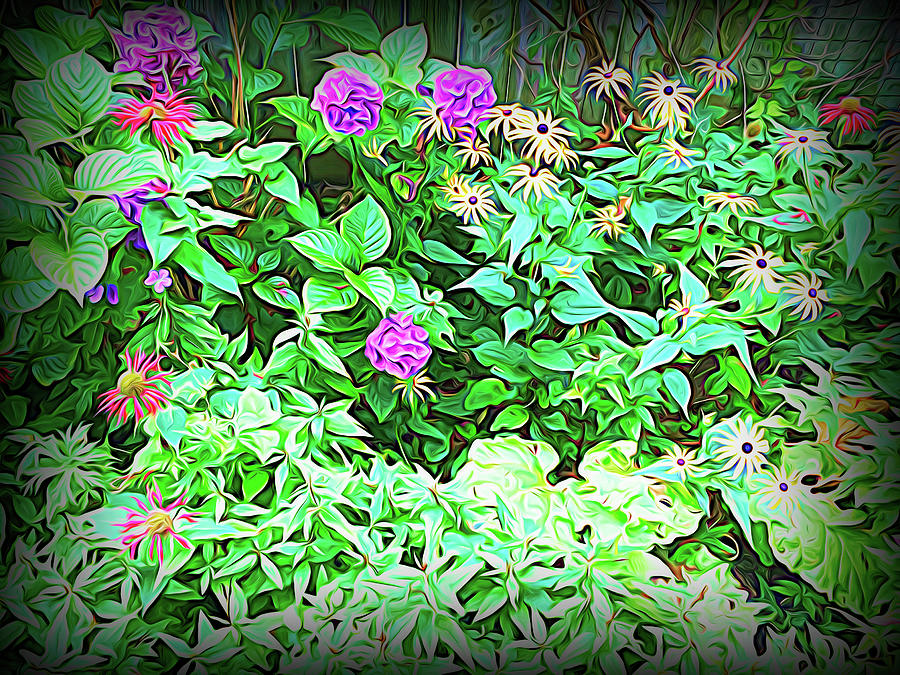 Summer Garden Evening Shadow by Aimee L Maher ALM GALLERY