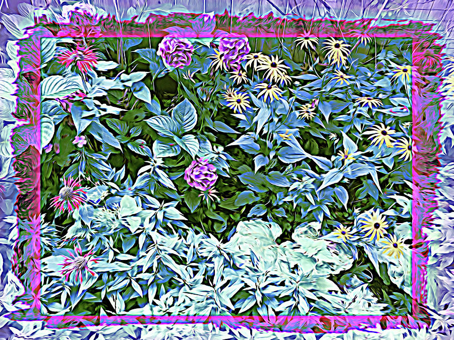 Summer Garden Wildflower by Aimee L Maher ALM GALLERY