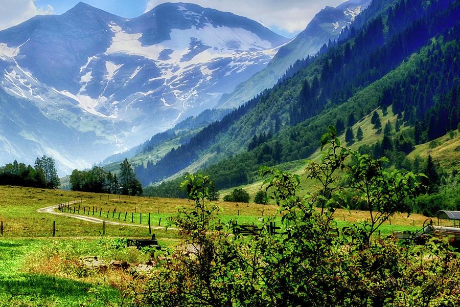 Summer in Tirol Austria by Gerlinde Keating - Galleria GK