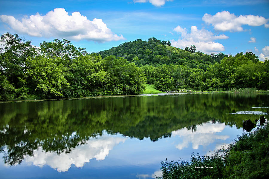 Summer Reflections by Dale R Carlson