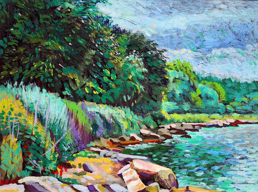 Summer Shore Of Hudson River, New York Digital Art by Charles Harker