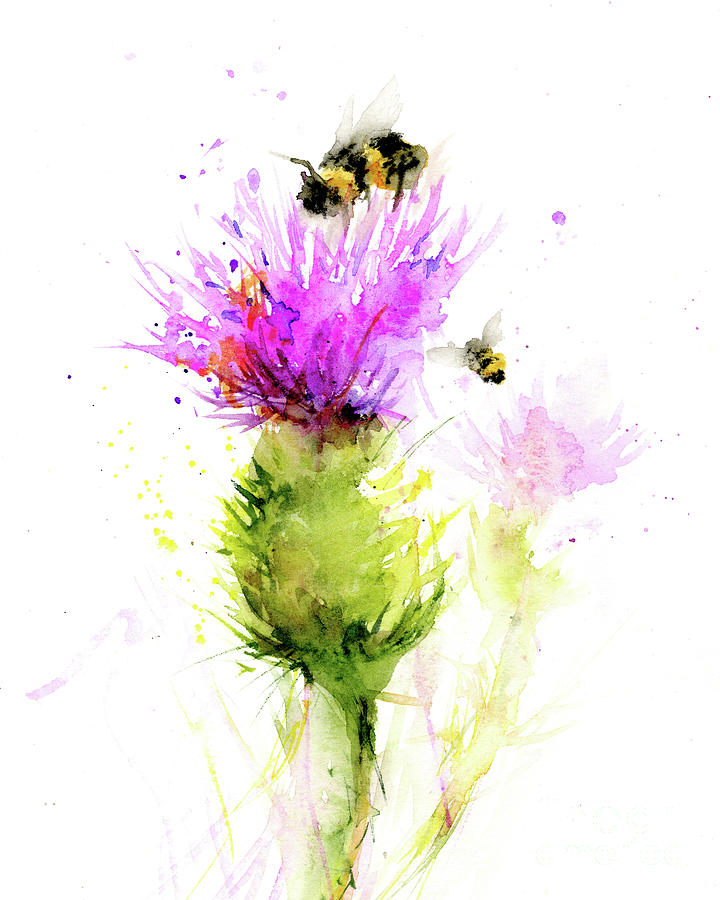 Summer Thistle by Christy Lemp