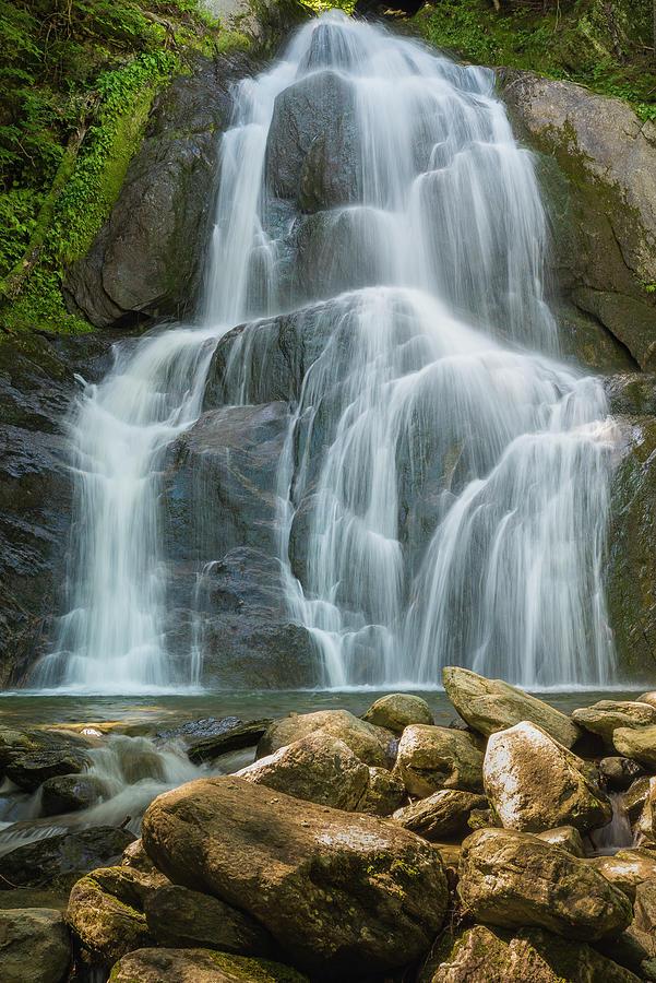 Color Photograph - Summer Waterfall by Brenda Petrella Photography Llc