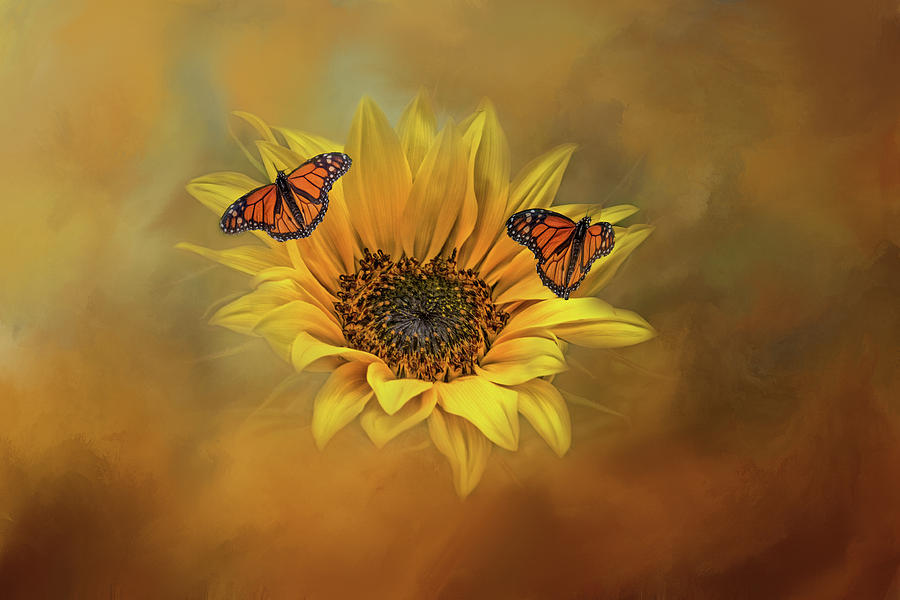 Summertime Beauties  by Kelley Parker